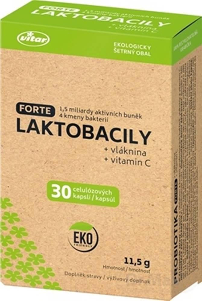Vitar VITAR LAKTOBACILY FORTE + vláknina + vitamín C