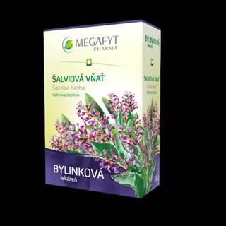 MEGAFYT BL Pestrec mariánsky plod 130 g