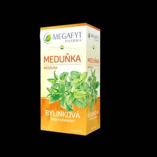 MEGAFYT Bylinková lekáreň medovka 20 x 1,5 g