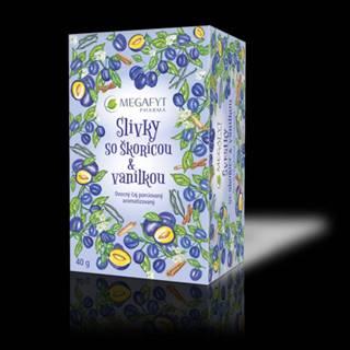 MEGAFYT Slivky so škoricou & vanilkou 20 x 2 g