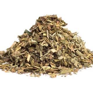 ALCHEMILKA OBYČAJNÁ VŇAŤ (Alchemilla vulgaris) - bylina, 10g