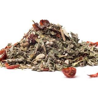 BYLINNÁ ZMES JEDNODUCHÁ DIÉTA - wellness čaj, 10g