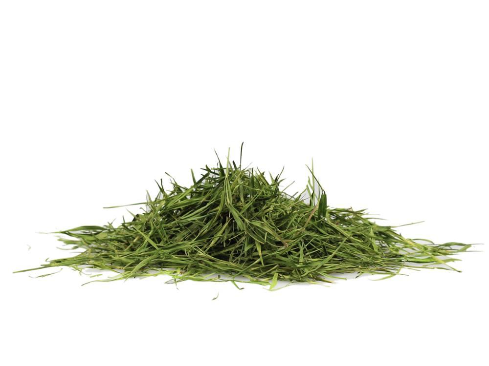 Manu tea BAMBUS LISTY - bylina, 10g