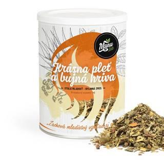 KRÁSNA PLEŤ A BUJNÁ HRIVA - bylinný čaj 210g