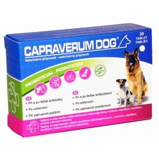 Capraverum dog probioticum-prebioticum 30 tbl