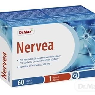 Dr.Max Nervea (inov. 2020)