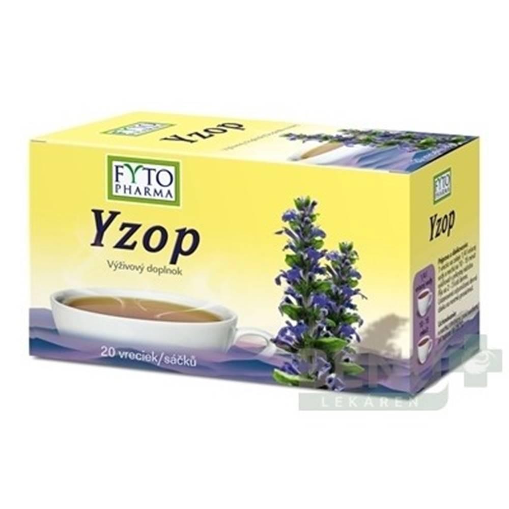 FYTO FYTO Yzop 20 x 1,5g