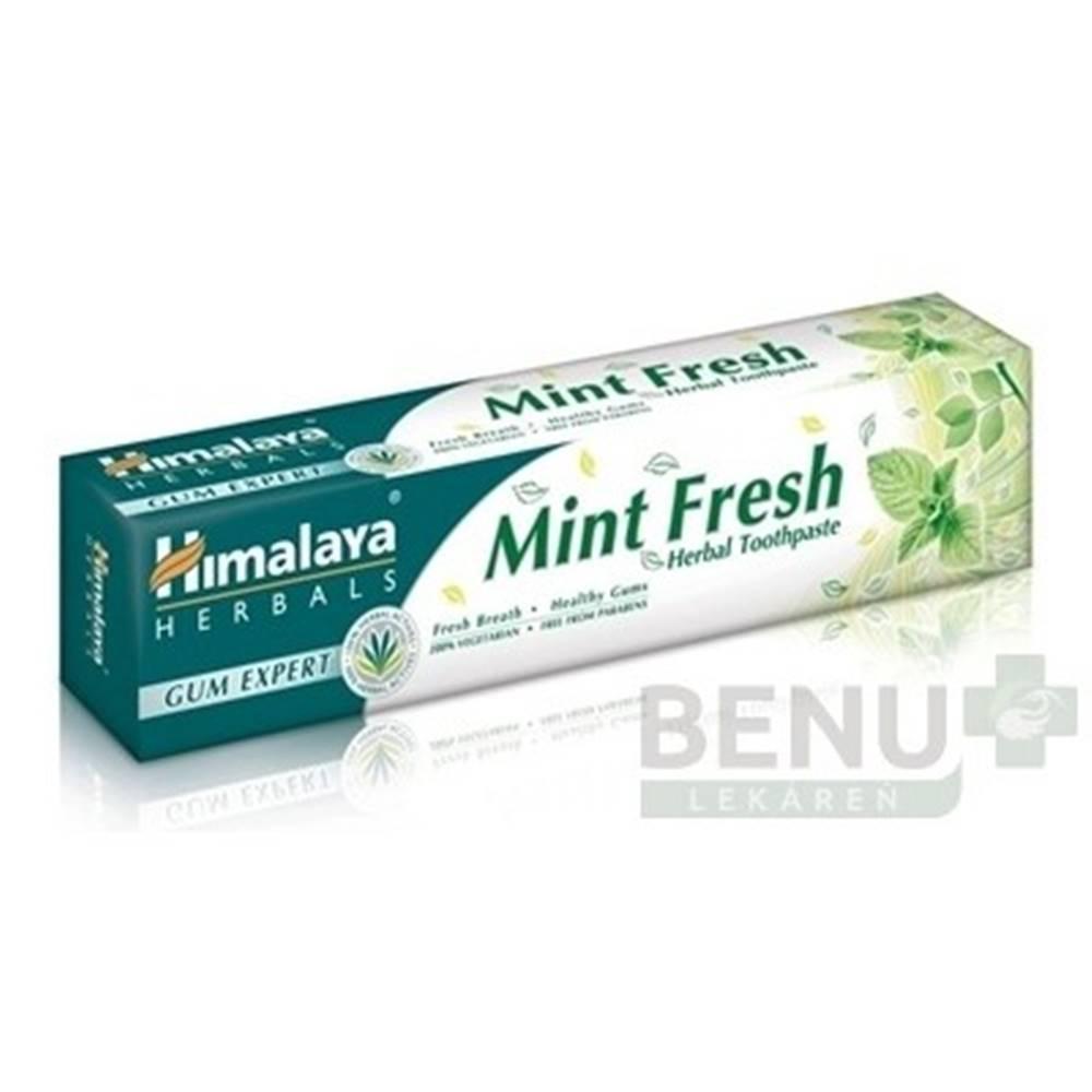 Himalaya HIMALAYA Bylinná zubná pasta pre svieži dych 75 ml