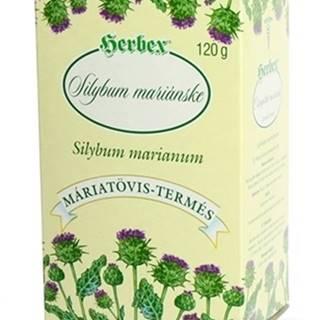 Herbex Silybum mariÁnske