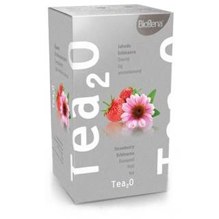 BIOGENA Tea2O jahoda & echinacea 20x2,3 g